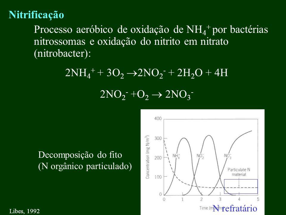 Nitrificação Processo aeróbico de oxidação de NH 4 + por bactérias nitrossomas e oxidação do nitrito em nitrato (nitrobacter): 2NH 4 + + 3O 2 2NO 2 -