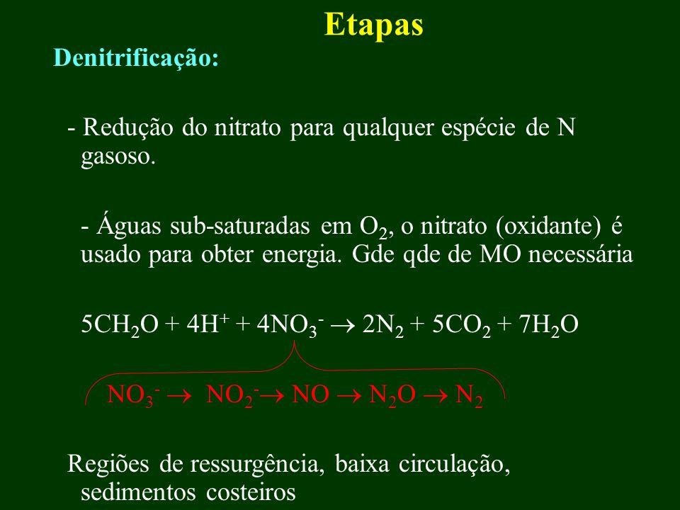 Etapas Denitrificação: - Redução do nitrato para qualquer espécie de N gasoso. - Águas sub-saturadas em O 2, o nitrato (oxidante) é usado para obter e