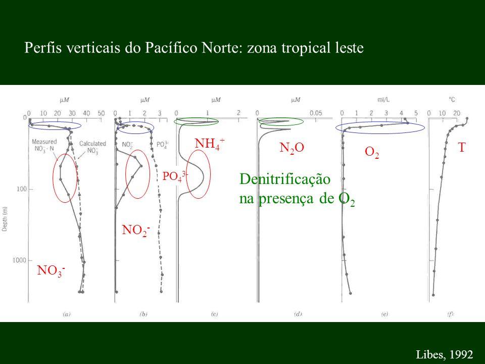 T O2O2 N2ON2O NH 4 + PO 4 3- NO 2 - NO 3 - Libes, 1992 Perfis verticais do Pacífico Norte: zona tropical leste Denitrificação na presença de O 2