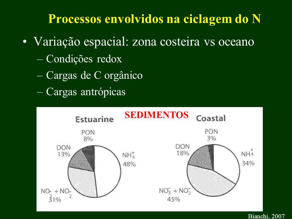 Processos envolvidos na ciclagem do N Variação espacial: zona costeira vs oceano –Condições redox –Cargas de C orgânico –Cargas antrópicas SEDIMENTOS