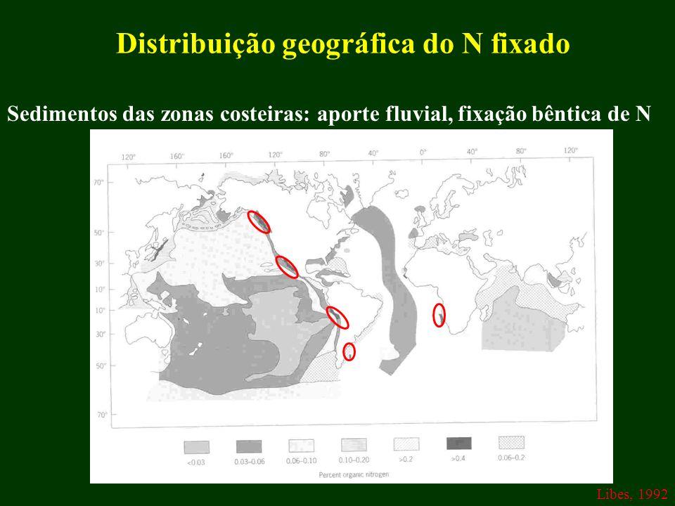 Distribuição geográfica do N fixado Sedimentos das zonas costeiras: aporte fluvial, fixação bêntica de N Libes, 1992