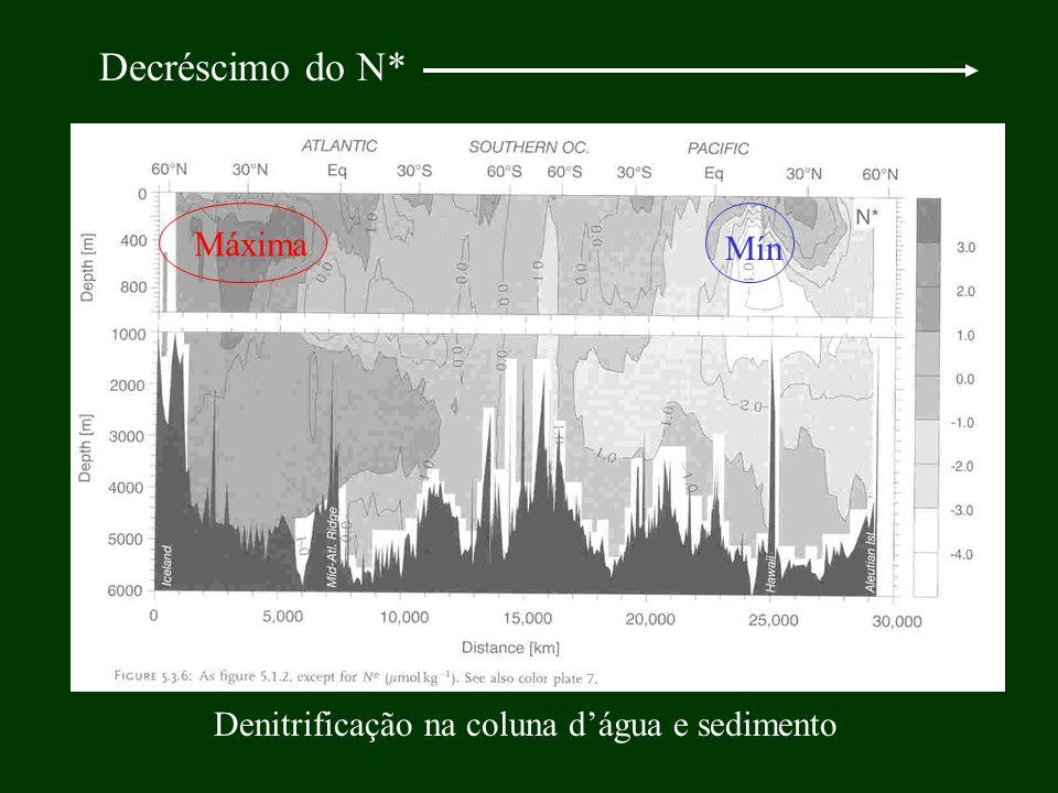 Decréscimo do N* Máxima Mín Denitrificação na coluna dágua e sedimento