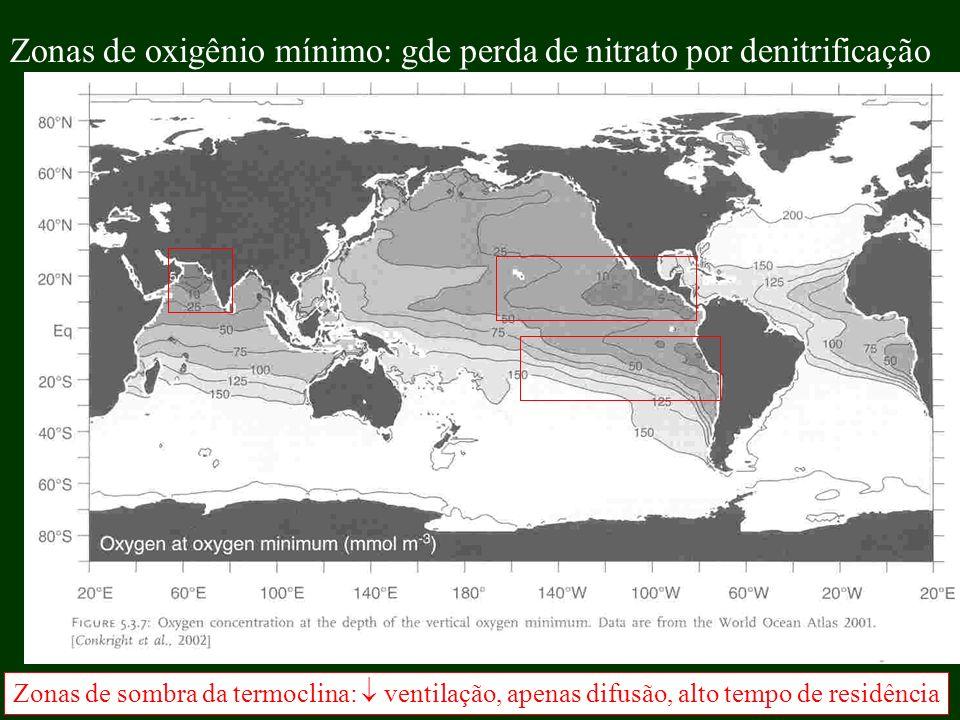 Zonas de oxigênio mínimo: gde perda de nitrato por denitrificação Zonas de sombra da termoclina: ventilação, apenas difusão, alto tempo de residência