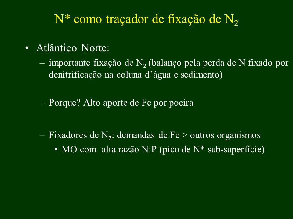 Atlântico Norte: –importante fixação de N 2 (balanço pela perda de N fixado por denitrificação na coluna dágua e sedimento) –Porque? Alto aporte de Fe