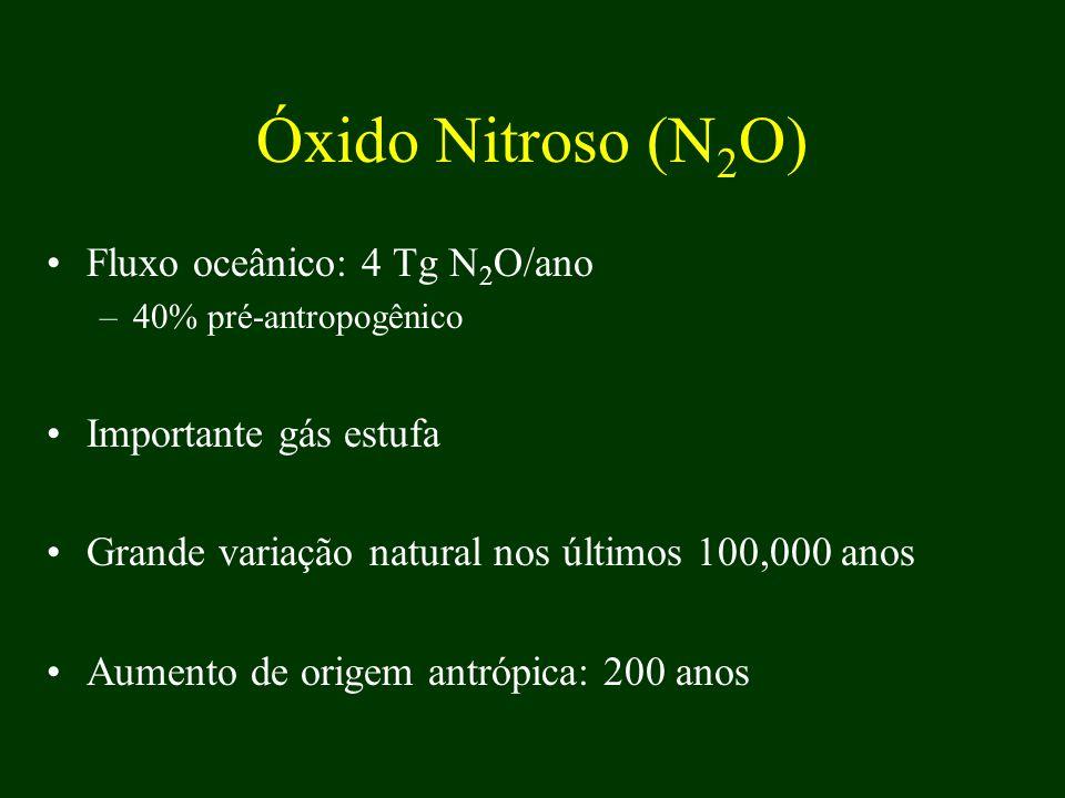 Óxido Nitroso (N 2 O) Fluxo oceânico: 4 Tg N 2 O/ano –40% pré-antropogênico Importante gás estufa Grande variação natural nos últimos 100,000 anos Aum
