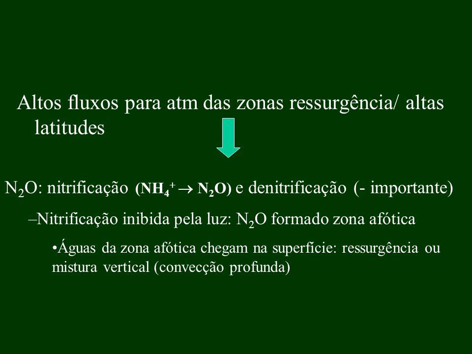 Altos fluxos para atm das zonas ressurgência/ altas latitudes N 2 O: nitrificação (NH 4 + N 2 O) e denitrificação (- importante) –Nitrificação inibida
