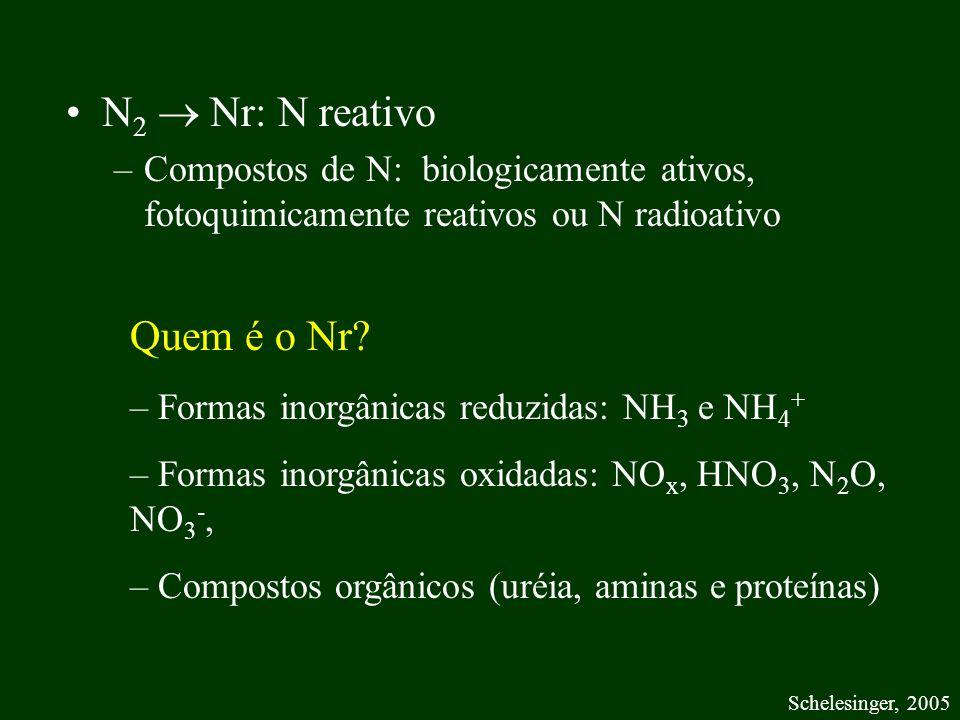 N 2 Nr: N reativo –Compostos de N: biologicamente ativos, fotoquimicamente reativos ou N radioativo Schelesinger, 2005 Quem é o Nr? – Formas inorgânic