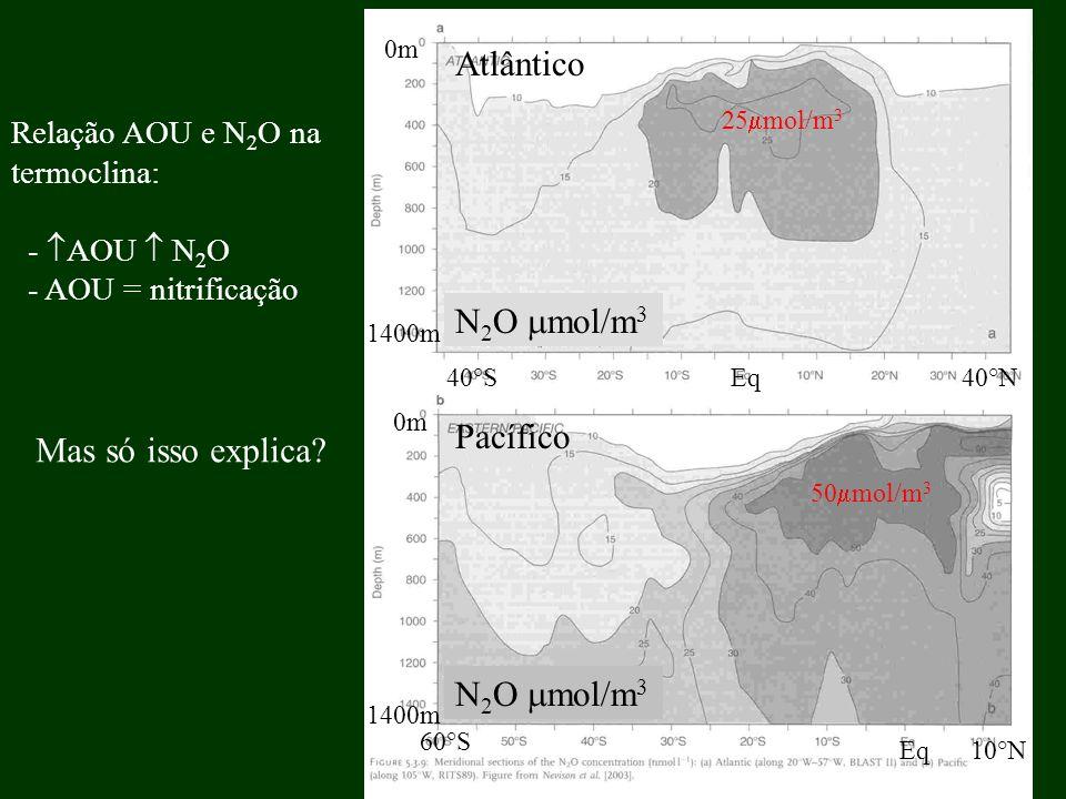 Relação AOU e N 2 O na termoclina: - AOU N 2 O - AOU = nitrificação Mas só isso explica? 25 mol/m 3 50 mol/m 3 N 2 O mol/m 3 Atlântico Pacífico 40°S 6