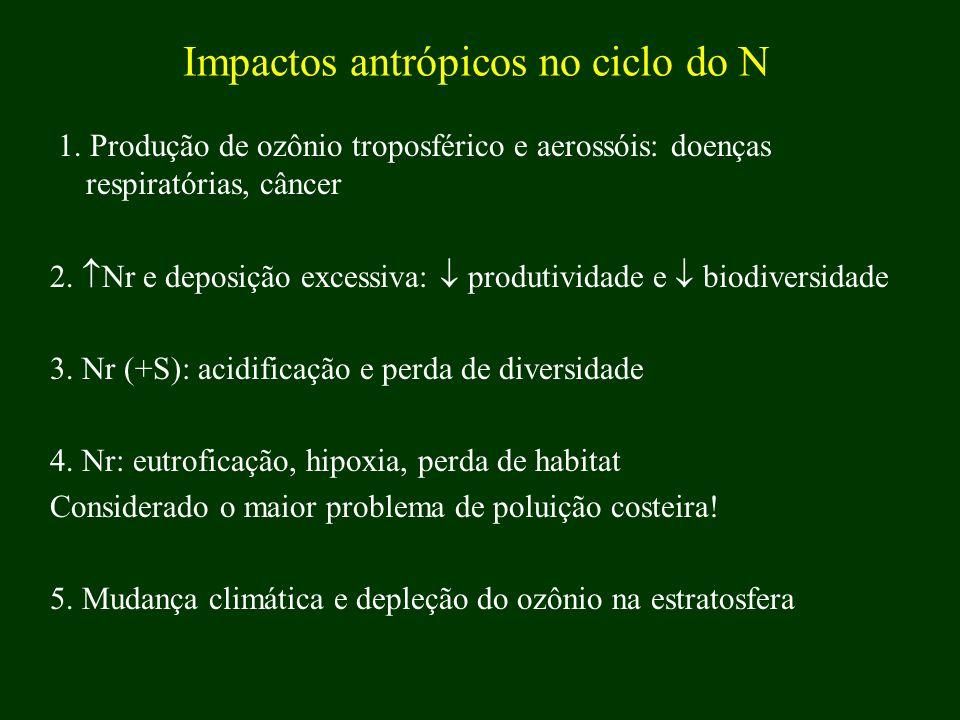 Impactos antrópicos no ciclo do N 1. Produção de ozônio troposférico e aerossóis: doenças respiratórias, câncer 2. Nr e deposição excessiva: produtivi