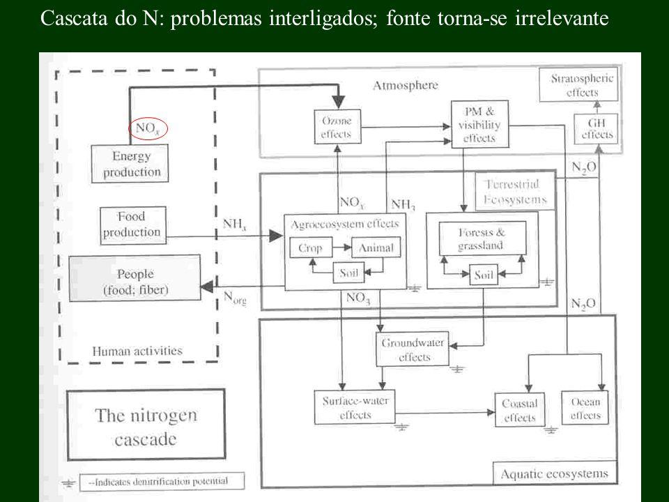 Cascata do N: problemas interligados; fonte torna-se irrelevante