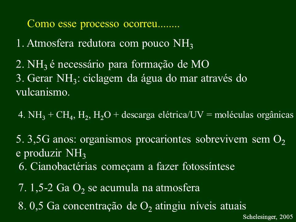 1. Atmosfera redutora com pouco NH 3 2. NH 3 é necessário para formação de MO 3. Gerar NH 3 : ciclagem da água do mar através do vulcanismo. 5. 3,5G a