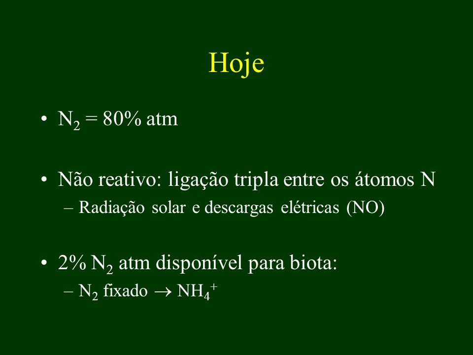 Hoje N 2 = 80% atm Não reativo: ligação tripla entre os átomos N –Radiação solar e descargas elétricas (NO) 2% N 2 atm disponível para biota: –N 2 fix