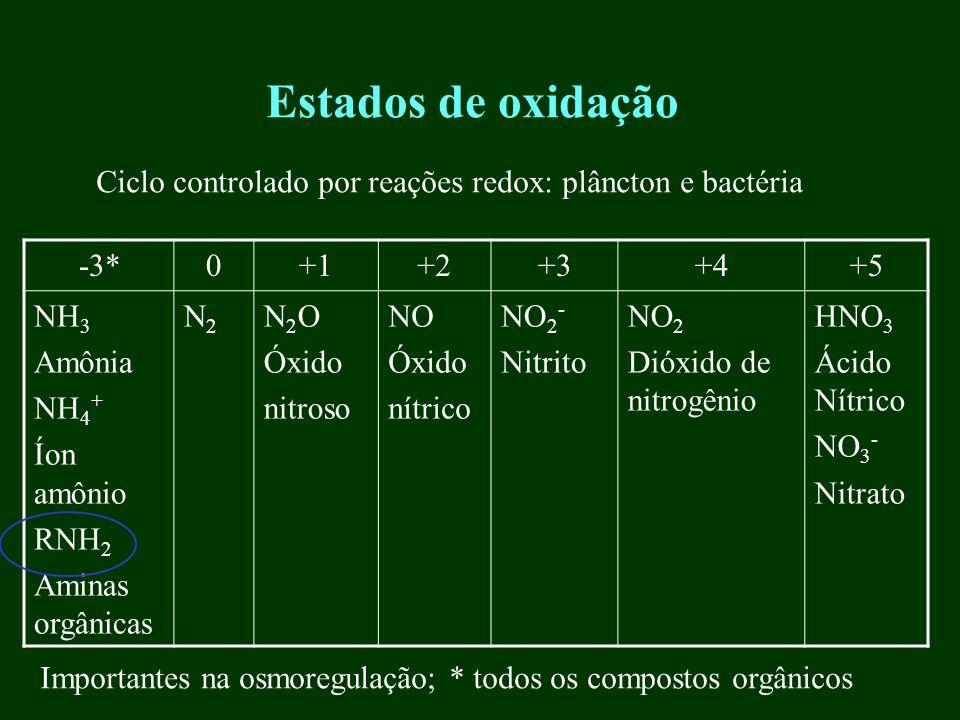 Estados de oxidação -3*0+1+2+3+4+5 NH 3 Amônia NH 4 + Íon amônio RNH 2 Aminas orgânicas N2N2 N 2 O Óxido nitroso NO Óxido nítrico NO 2 - Nitrito NO 2