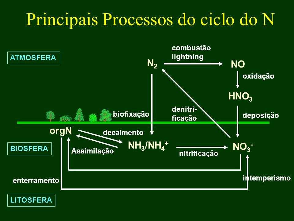 Principais Processos do ciclo do N ATMOSFERA N2N2 NO HNO 3 NH 3 /NH 4 + NO 3 - orgN BIOSFERA LITOSFERA combustão lightning oxidação deposição Assimila