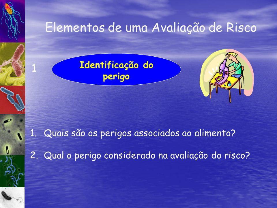 Elementos de uma Avaliação de Risco Identificação do perigo 1 1.Quais são os perigos associados ao alimento? 2.Qual o perigo considerado na avaliação