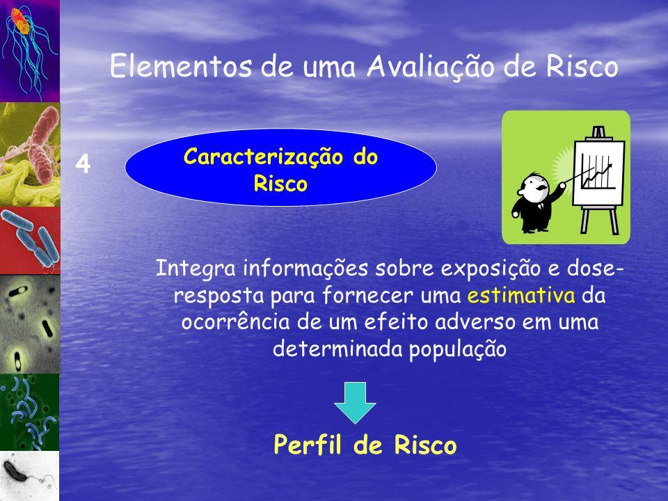 Caracterização do Risco 4 Integra informações sobre exposição e dose- resposta para fornecer uma estimativa da ocorrência de um efeito adverso em uma