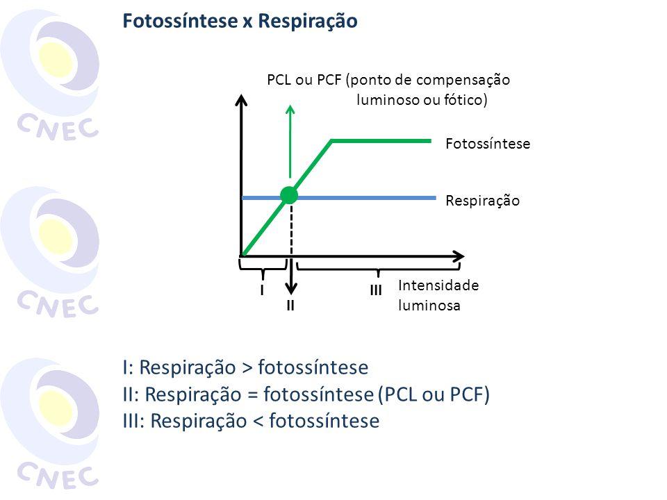 Fotossíntese x Respiração I: Respiração > fotossíntese II: Respiração = fotossíntese (PCL ou PCF) III: Respiração < fotossíntese Intensidade luminosa