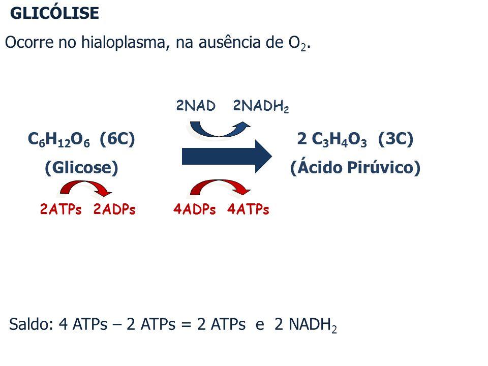 C 6 H 12 O 6 (6C) (Glicose) 2NAD 2NADH 2 4ADPs 4ATPs 2ATPs 2ADPs 2 C 3 H 4 O 3 (3C) (Ácido Pirúvico) GLICÓLISE Ocorre no hialoplasma, na ausência de O