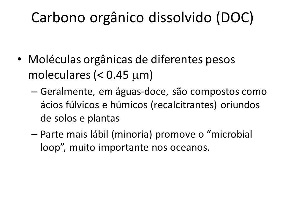 Carbono orgânico dissolvido (DOC) Moléculas orgânicas de diferentes pesos moleculares (< 0.45 m) – Geralmente, em águas-doce, são compostos como ácios