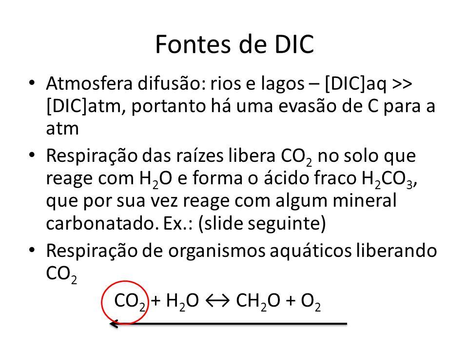 Fontes de DIC Atmosfera difusão: rios e lagos – [DIC]aq >> [DIC]atm, portanto há uma evasão de C para a atm Respiração das raízes libera CO 2 no solo