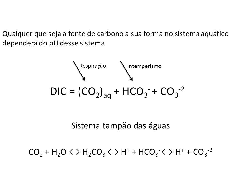 Sistema tampão das águas CO 2 + H 2 O H 2 CO 3 H + + HCO 3 - H + + CO 3 -2 DIC = (CO 2 ) aq + HCO 3 - + CO 3 -2 Qualquer que seja a fonte de carbono a