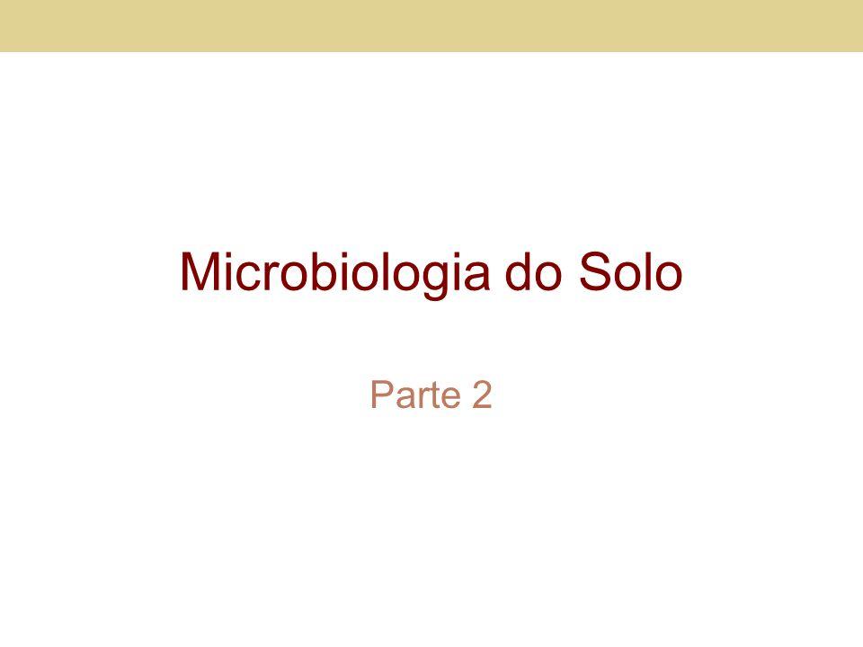 Microbiologia do Solo Parte 2