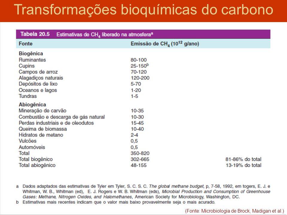 (Fonte: Microbiologia de Brock, Madigan et al.) Transformações bioquímicas do carbono (Fonte: Microbiologia de Brock, Madigan et al.)