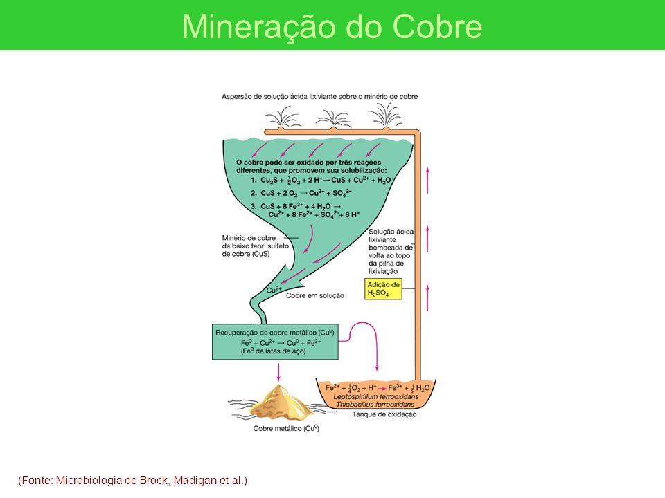 Mineração do Cobre