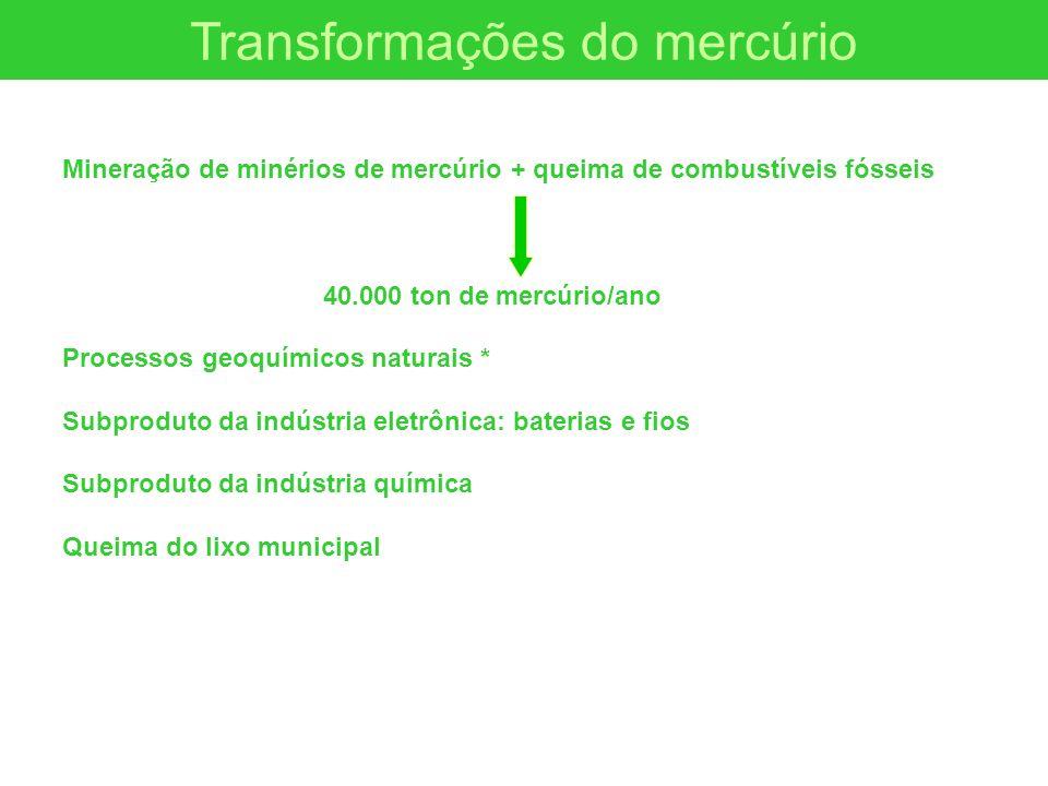 Transformações do mercúrio Mineração de minérios de mercúrio + queima de combustíveis fósseis 40.000 ton de mercúrio/ano Processos geoquímicos naturai