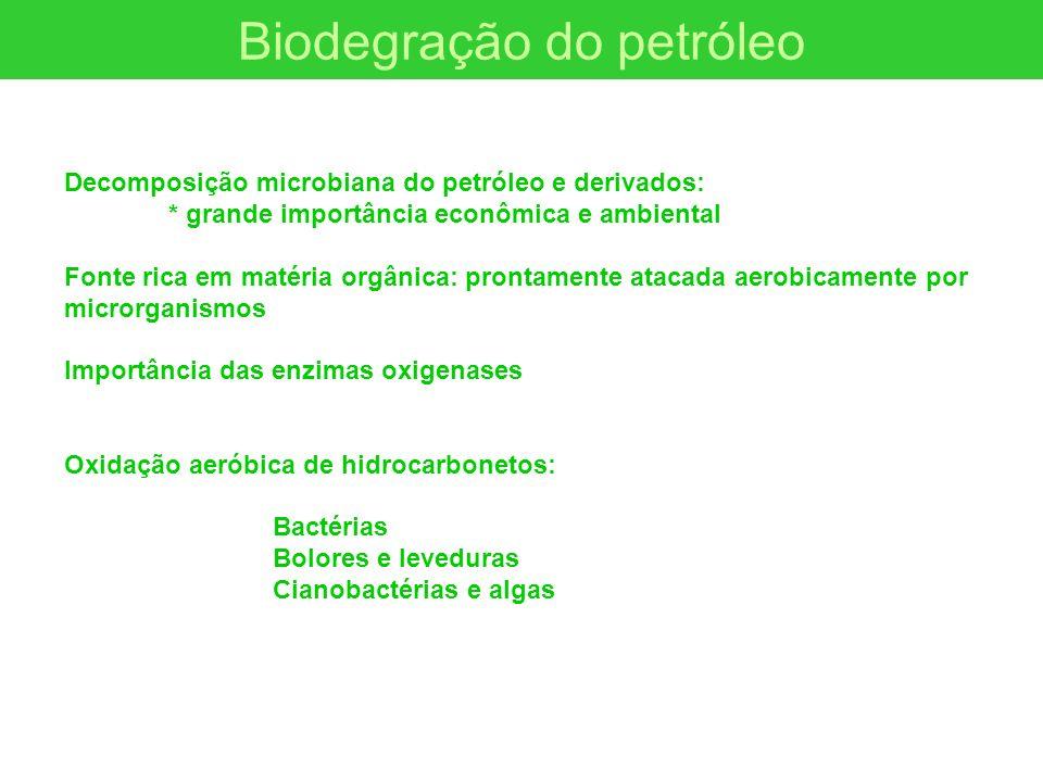 Biodegração do petróleo Decomposição microbiana do petróleo e derivados: * grande importância econômica e ambiental Fonte rica em matéria orgânica: pr