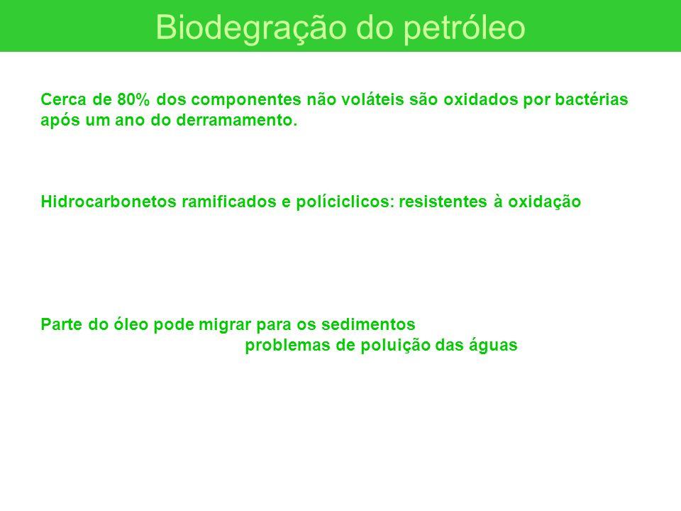 Biodegração do petróleo Cerca de 80% dos componentes não voláteis são oxidados por bactérias após um ano do derramamento. Hidrocarbonetos ramificados