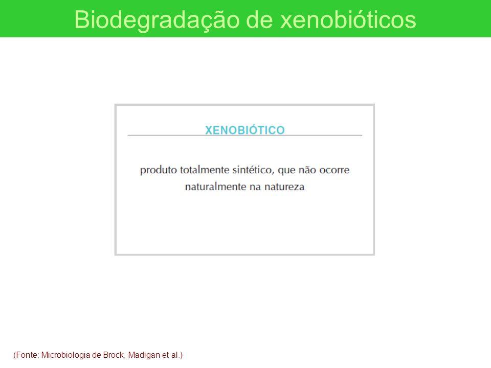 Biodegradação de xenobióticos