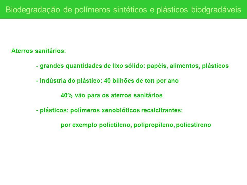 Biodegradação de polímeros sintéticos e plásticos biodgradáveis Aterros sanitários: - grandes quantidades de lixo sólido: papéis, alimentos, plásticos