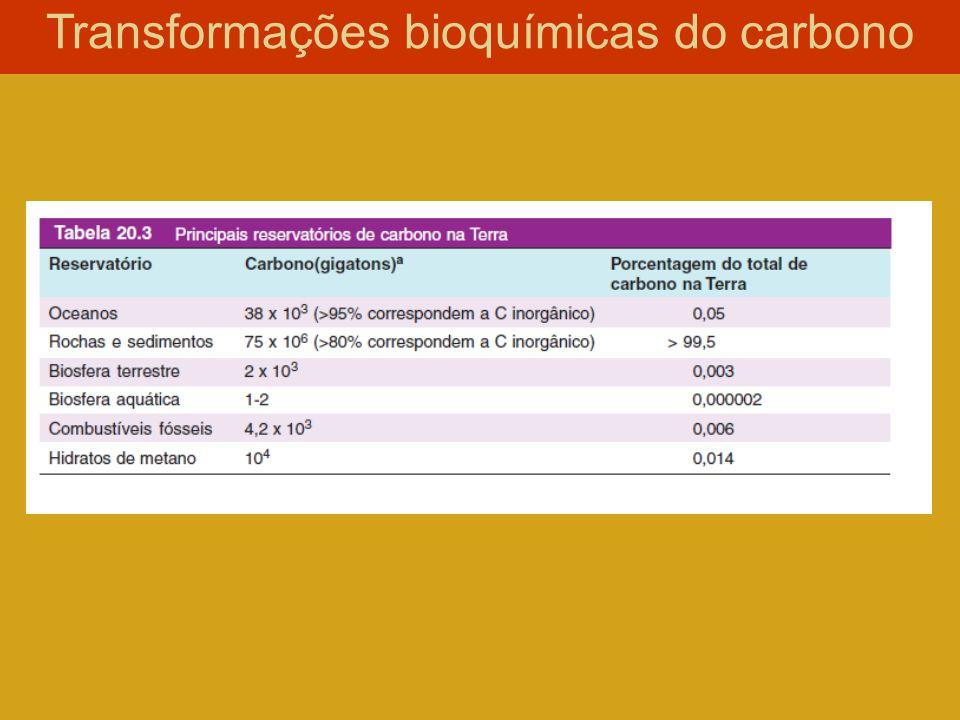 Transformações bioquímicas do carbono