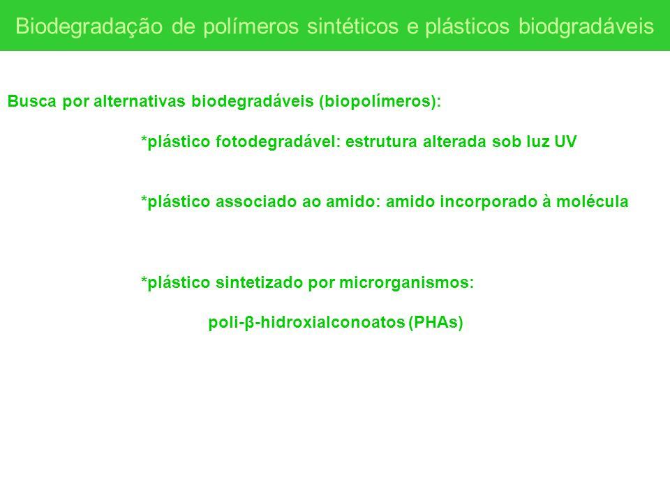 Busca por alternativas biodegradáveis (biopolímeros): *plástico fotodegradável: estrutura alterada sob luz UV *plástico associado ao amido: amido inco