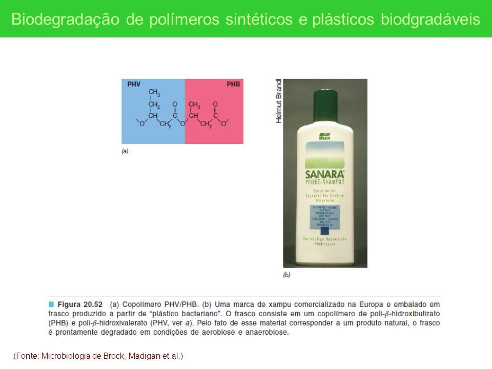 (Fonte: Microbiologia de Brock, Madigan et al.) Biodegradação de polímeros sintéticos e plásticos biodgradáveis