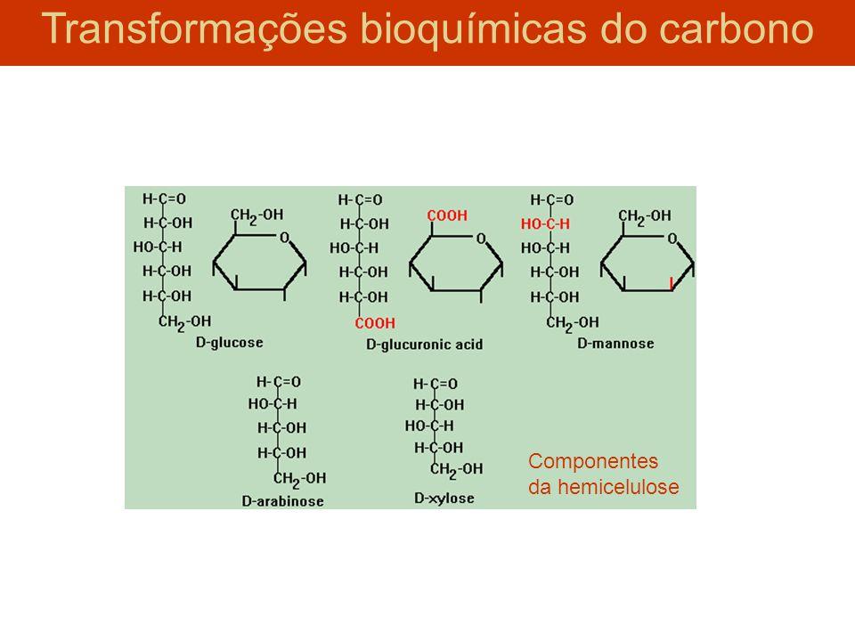 Componentes da hemicelulose Transformações bioquímicas do carbono