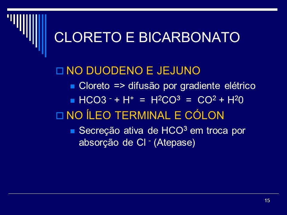 15 CLORETO E BICARBONATO NO DUODENO E JEJUNO Cloreto => difusão por gradiente elétrico HCO3 - + H + = H 2 CO 3 = CO 2 + H 2 0 NO ÍLEO TERMINAL E CÓLON