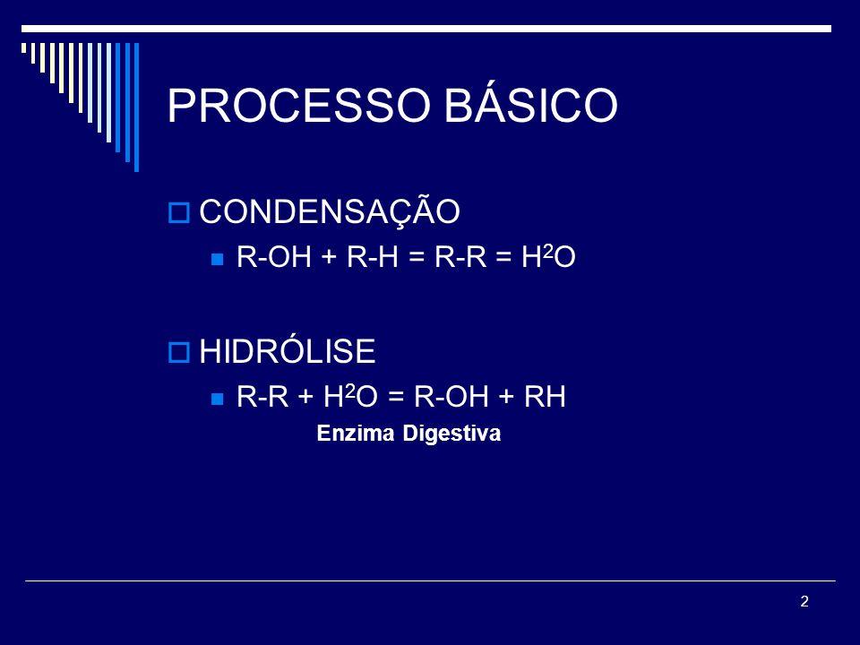 2 PROCESSO BÁSICO CONDENSAÇÃO R-OH + R-H = R-R = H 2 O HIDRÓLISE R-R + H 2 O = R-OH + RH Enzima Digestiva