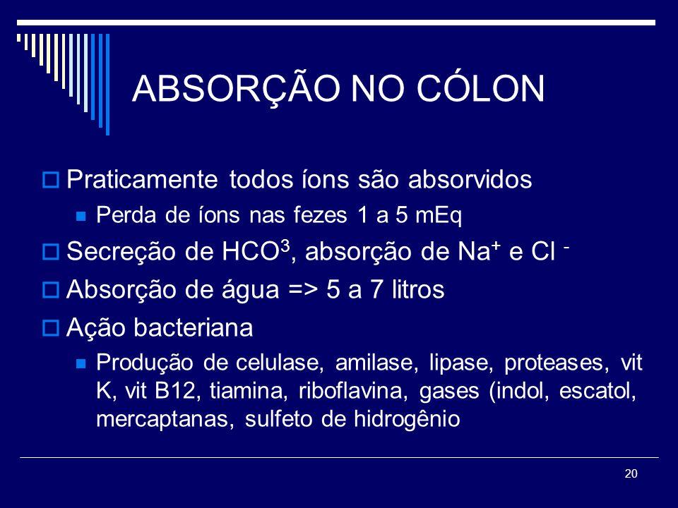 20 ABSORÇÃO NO CÓLON Praticamente todos íons são absorvidos Perda de íons nas fezes 1 a 5 mEq Secreção de HCO 3, absorção de Na + e Cl - Absorção de á