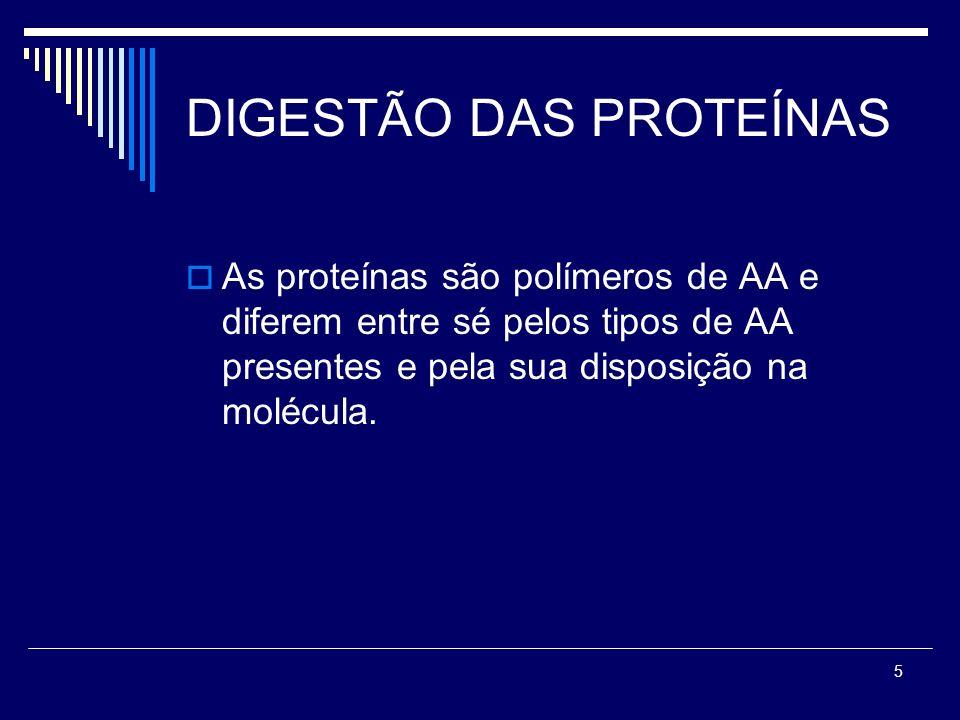 5 DIGESTÃO DAS PROTEÍNAS As proteínas são polímeros de AA e diferem entre sé pelos tipos de AA presentes e pela sua disposição na molécula.