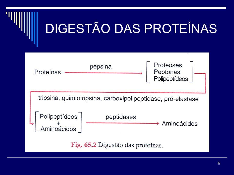 7 DIGESTÃO DAS GORDURAS GORDURAS DA DIETA Gorduras neutras (TG) Fosfolipídios Colesterol Ésteres de colesterol