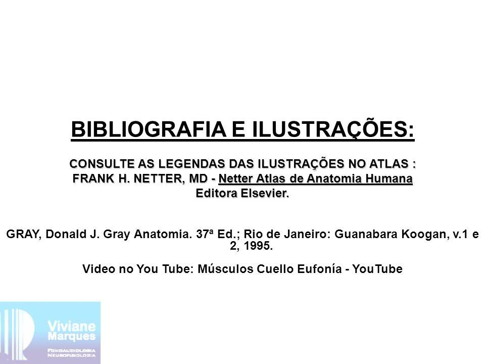 BIBLIOGRAFIA E ILUSTRAÇÕES: CONSULTE AS LEGENDAS DAS ILUSTRAÇÕES NO ATLAS : FRANK H. NETTER, MD - Netter Atlas de Anatomia Humana Editora Elsevier. GR