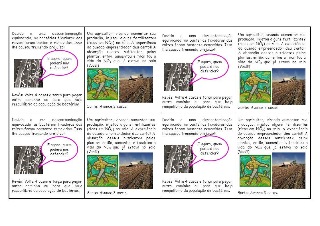 Um agricultor, visando aumentar sua produção, injetou alguns fertilizantes (ricos em NO 3 ) no solo. A experiência do ousado empreendedor deu certo!!