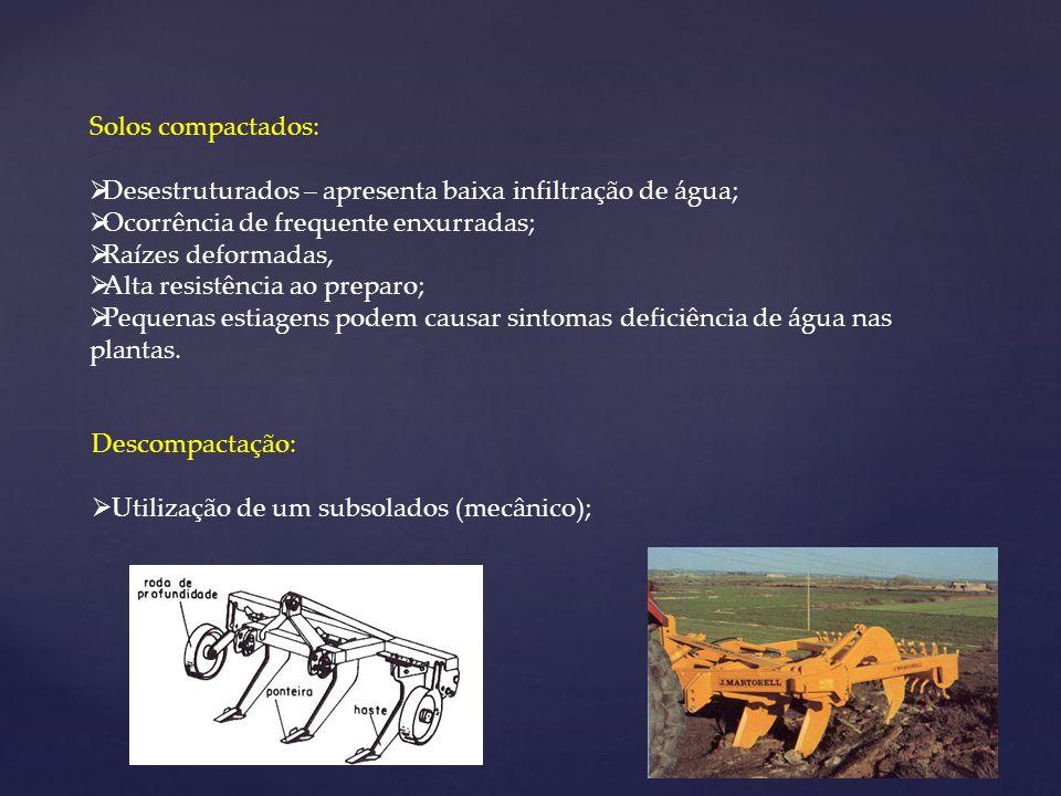 Solos compactados: Desestruturados – apresenta baixa infiltração de água; Ocorrência de frequente enxurradas; Raízes deformadas, Alta resistência ao p