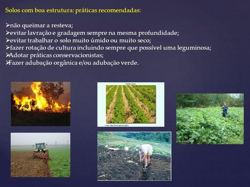 Solos com boa estrutura: práticas recomendadas: não queimar a resteva; evitar lavração e gradagem sempre na mesma profundidade; evitar trabalhar o sol