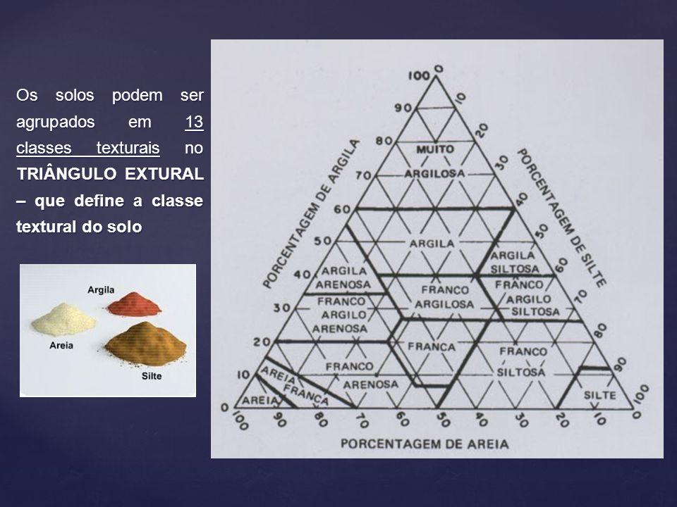 Classe textural Franco argilosa Ex: 33% argila 40% silte 40% silte 27% areia 27% areia