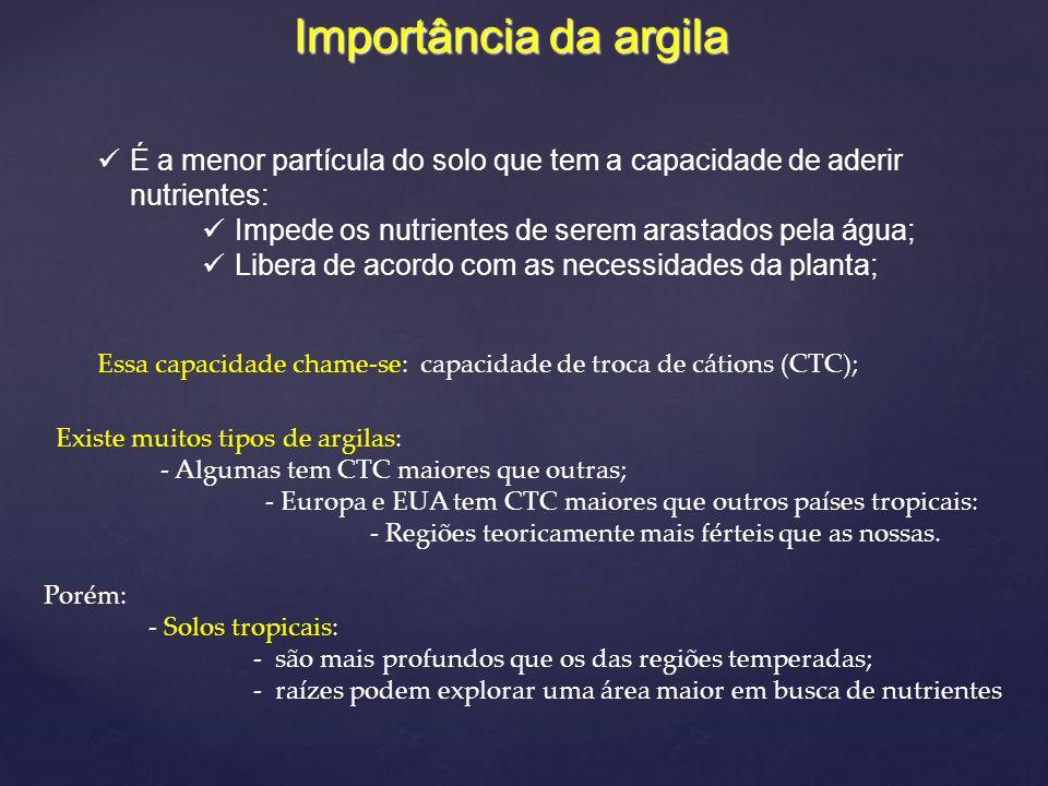 Ca ++ Mg ++ Na ++ K ++ H ++ Ca ++ K ++ H ++ Mg ++ H ++ K ++ Figura 1.