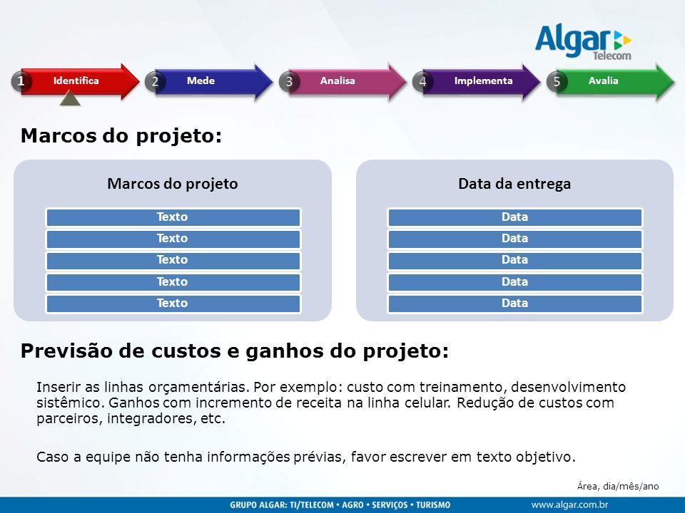 Área, dia/mês/ano Marcos do projeto: Marcos do projeto Texto Data da entrega Data Previsão de custos e ganhos do projeto: Inserir as linhas orçamentár