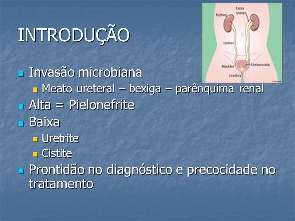 INTRODUÇÃO Invasão microbiana Invasão microbiana Meato ureteral – bexiga – parênquima renal Meato ureteral – bexiga – parênquima renal Alta = Pielonef